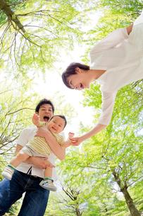 新緑の下で遊ぶ親子の写真素材 [FYI02935862]