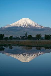 忍野村の水を張ったばかりの田圃に映る逆さ富士の写真素材 [FYI02935936]