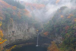 秋のうのこの滝の写真素材 [FYI02936030]
