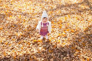 落葉の公園で笑う女の子の写真素材 [FYI02936098]