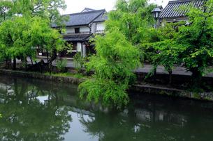 5月 小雨の倉敷美観地区の写真素材 [FYI02936124]