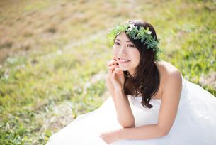 草の上に座るウェディングドレス姿の女性の写真素材 [FYI02936291]