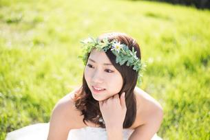 草の上に座るウェディングドレス姿の女性の写真素材 [FYI02936396]