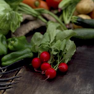 ラディッシュと畑で採れた野菜の写真素材 [FYI02936420]