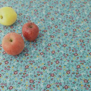 リンゴの写真素材 [FYI02936513]
