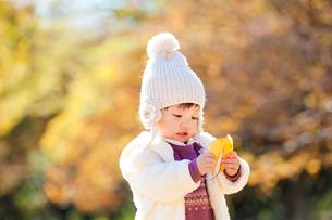 紅葉の公園で葉っぱを見る女の子の写真素材 [FYI02936532]