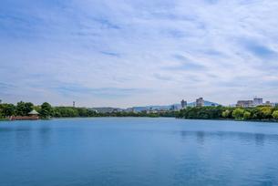 大濠公園(浮見堂・武道館)の写真素材 [FYI02936543]