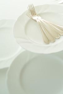 皿の上に置かれた銀のフォークの写真素材 [FYI02936792]