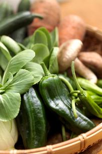 かごに入れた夏野菜の写真素材 [FYI02936797]