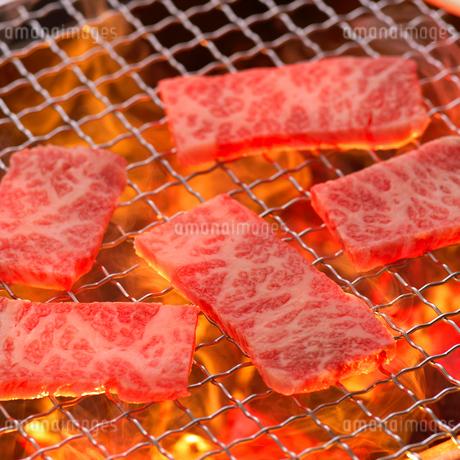 網焼きの肉の写真素材 [FYI02936906]