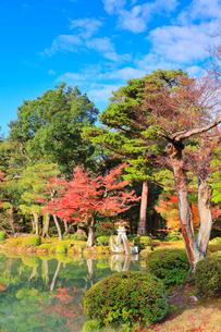 秋の兼六園・ことじ灯籠に紅葉の写真素材 [FYI02937228]
