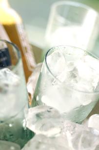 ビールと氷の入ったグラスの写真素材 [FYI02937518]