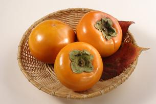ザルにのった柿の写真素材 [FYI02937641]