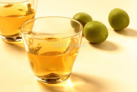 梅酒の写真素材 [FYI02937759]
