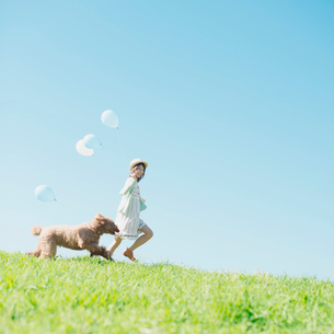 草原を走る女性と犬の写真素材 [FYI02938105]