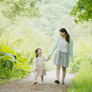 新緑の中で手をつなぐ親子の写真素材 [FYI02938375]