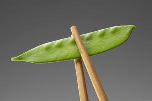 Chopsticks holding snow peaの写真素材 [FYI02939043]