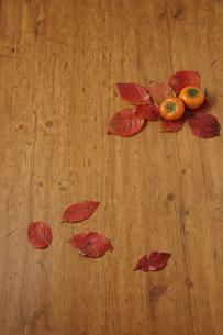 落ち葉と柿イメージの写真素材 [FYI02939375]