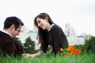 Couple sitting on grass holding handsの写真素材 [FYI02939393]