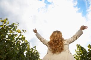 Woman raising arms in vineyardの写真素材 [FYI02939402]