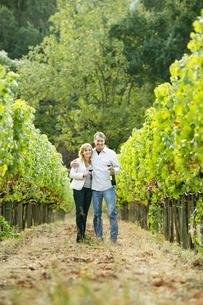 Couple standing in vineyardの写真素材 [FYI02939433]