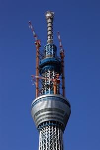 東京スカイツリーの先端の望遠の写真素材 [FYI02939523]