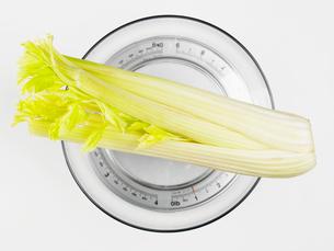 Celery on bathroom scaleの写真素材 [FYI02939678]