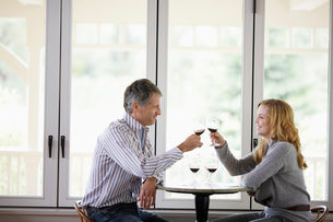 Couple toasting with red wineの写真素材 [FYI02939774]