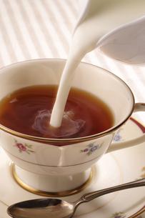 紅茶の写真素材 [FYI02939892]