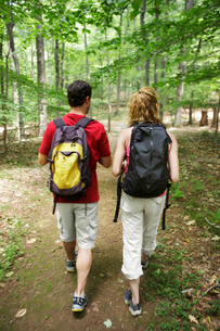 Man and woman hiking in forestの写真素材 [FYI02940070]