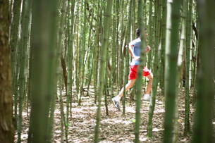 Young man jogging in forestの写真素材 [FYI02940524]