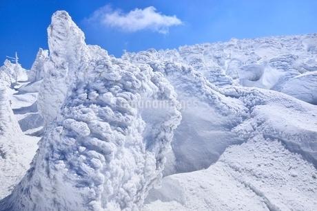 蔵王 地蔵山の樹氷の写真素材 [FYI02942159]