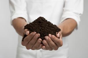 Heap of soil in persons handsの写真素材 [FYI02942580]