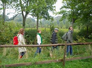 Four people hikingの写真素材 [FYI02943201]