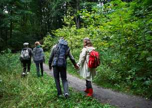 Four People Hiking in Forestの写真素材 [FYI02943353]