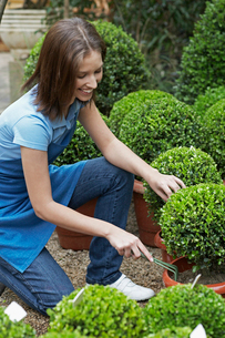 Female florist using garden forkの写真素材 [FYI02943563]