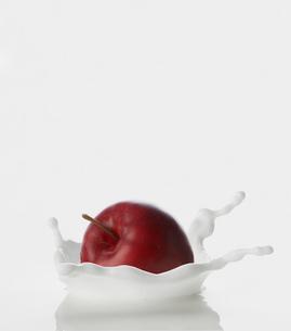 Apple Falling into Milkの写真素材 [FYI02943579]