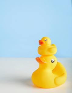 Two Rubber Ducksの写真素材 [FYI02943583]