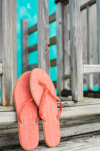 Pink flip flops leaning on fenceの写真素材 [FYI02943715]