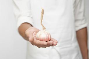 Garlic onion on chefs handの写真素材 [FYI02943891]