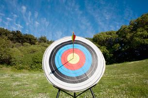 Arrow in bullseye of targetの写真素材 [FYI02944083]