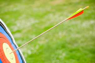 Arrow in bullseye of target (close-up)の写真素材 [FYI02944354]