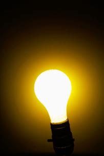 Illuminated Lightbulbの写真素材 [FYI02944548]
