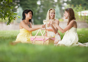 Three Female Friends Toasting at Picnicの写真素材 [FYI02944571]