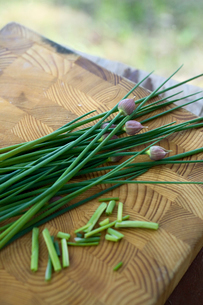 Finland, Varkaus, Chive on cutting boardの写真素材 [FYI02944801]