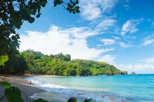 Trinidad and Tobago, Tobago, Englishman's Bay, Scenic view of coastlineの写真素材 [FYI02945098]