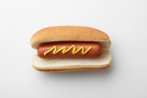 Single hot dogの写真素材 [FYI02945175]