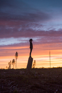 Woman standing on a tree stump at sunset in Vasterbotten, Swedenの写真素材 [FYI02945365]