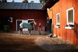Sweden, Uppland, Faringso, Woman holding horse by bridleの写真素材 [FYI02945505]