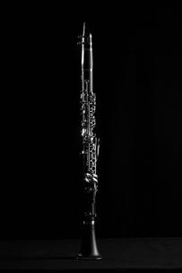 Single clarinetの写真素材 [FYI02945508]